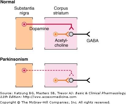 Expected OSPE Slides for Pharmacology (5/6)