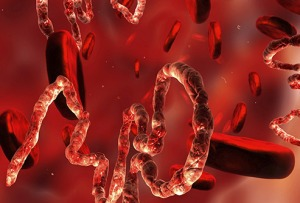 thinkstock_rf_illustration_of_ebola_virus